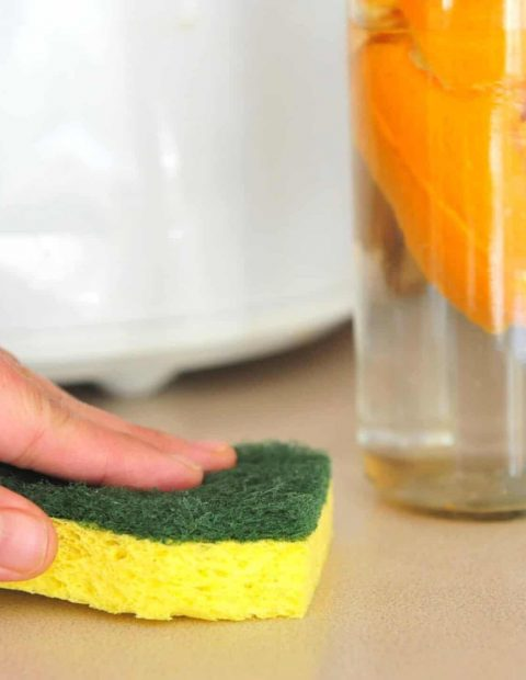 cellulose cleaning scrub sponges